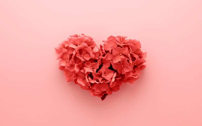 Predvidite svoj ljubavni život
