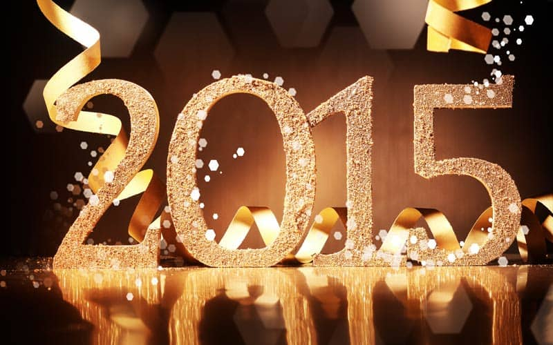 2015. godina